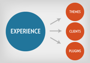 image of our Agility Squared's experience that we offer for web design brisbane